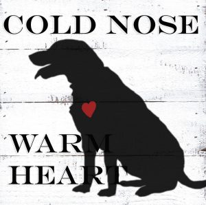 Cold Nose