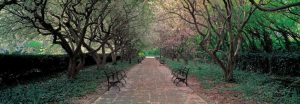 Through Conservatory Garden Central Park NYC