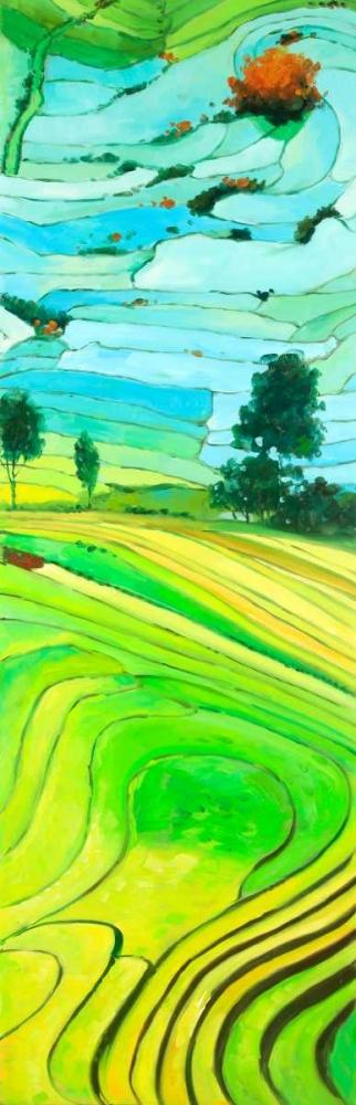 Rice fields to Vietnam