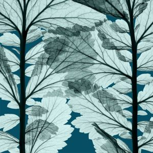 Leaf Forest – Blue