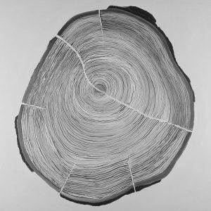 Grayscale Oval Shaped Tree Slab