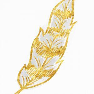Phoenix Feather 2