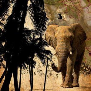 Mighty Elephant 2