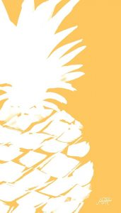 Modern Pineapple III
