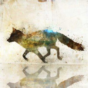 Fox Joy II