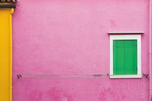 Windows of Burano V