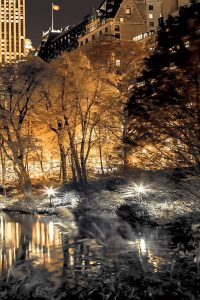 Central Park Glow III