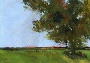 Autumn Oak and Empty Fields