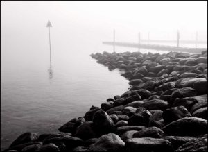 Rocky Shoreline in Fog