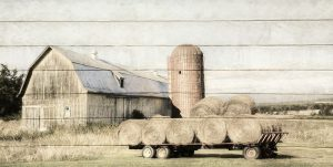 Wagon of Hay