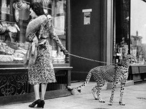Elegant Woman with Cheetah