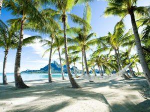 Hammock at Bora Bora Tahiti