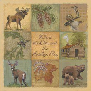 Deer and Antelope