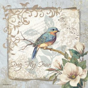 Sing Fly Soar – Border