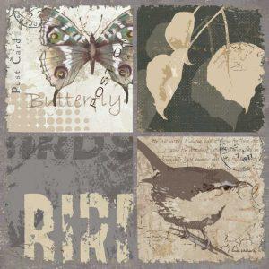 Bird 4 Patch V
