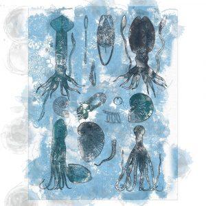 Aquatic VII