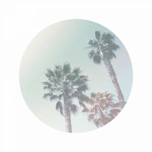 Faded Palms