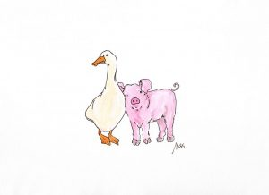 Duck and Pig