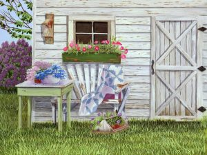 Garden Shed and Wren