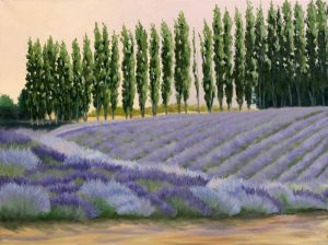 Greysmarsh Lavender