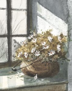 Daisies In