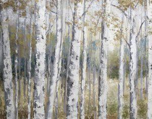 Hidden Birch