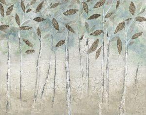 Rain Soft Woods
