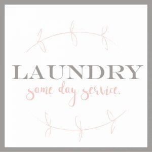 Laundry Vine II