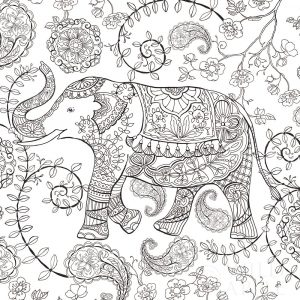 Color My World Elephant II Square