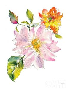 Dahlia Delight of the Day II