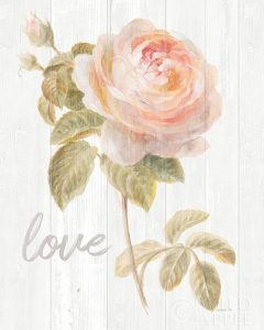 Garden Rose on Wood Love
