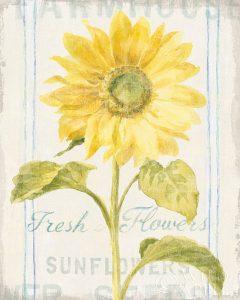 Floursack Florals II