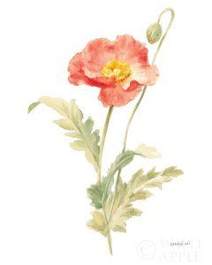 Floursack Florals on White IV