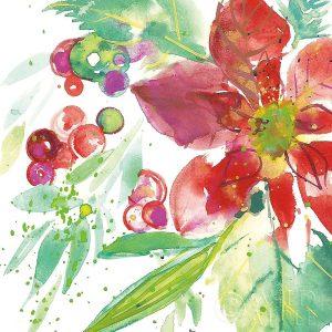 Poinsettia Pretty IV