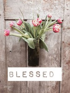 Blessed Tulips